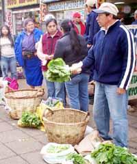 20090411215745-mujeresmapuches.jpg