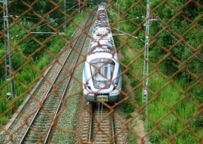 20070709121926-t-g.jpg