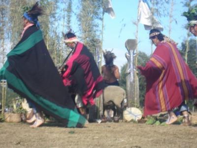 20080129105018-mapuches9.jpg